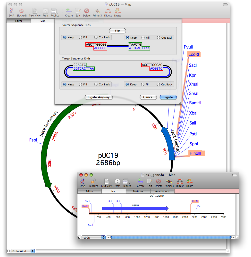 how to add the vector annotation