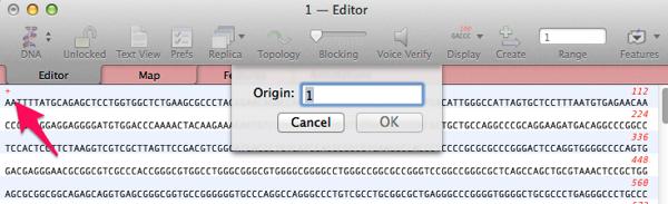 1 Editor