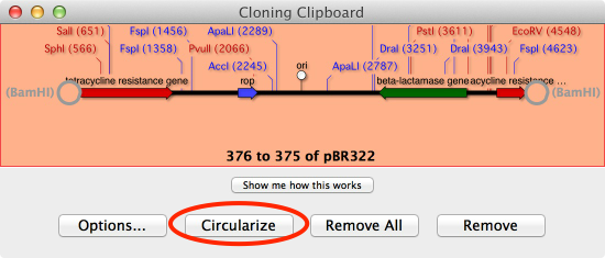 CloningCLipboard