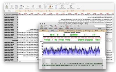 L paracasei genomic scaffold Contig 1 Map and L paracasei genomic scaffold Contig 1 Editor