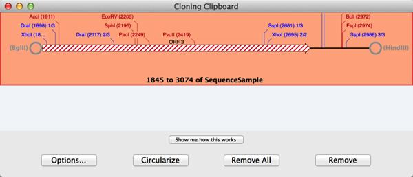 Cloning Clipboard