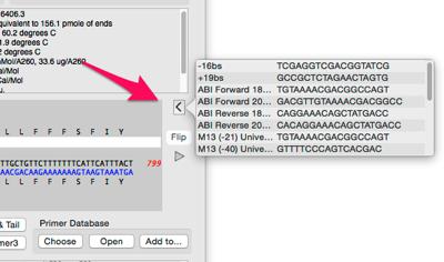 QT primer Database